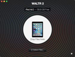 walter2-01