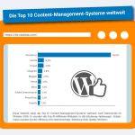 WordPress – welche Hosting-Möglichkeiten gibt es auf dem Markt?