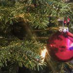 Hey Siri: Beleuchtung vom Weihnachtsbaum einschalten... Sprachsteuerung für die Festbeleuchtung