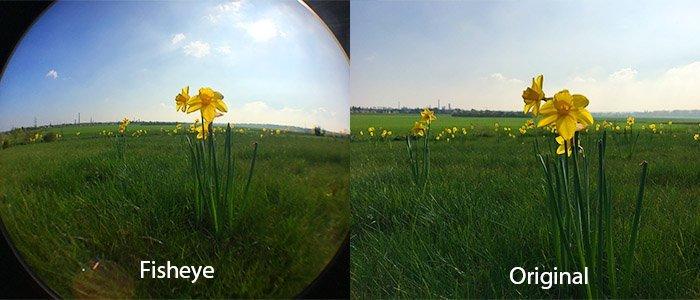 Wow Faktor mit Objektiven für die Handykamera (Fisheye und Makro)