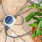DIY Feuchtigkeitssensor: Erste Ergebnispräsentation in der Gartenbewässerung