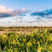 Klimaneutrales Unternehmen - So ist die Umstellung möglich